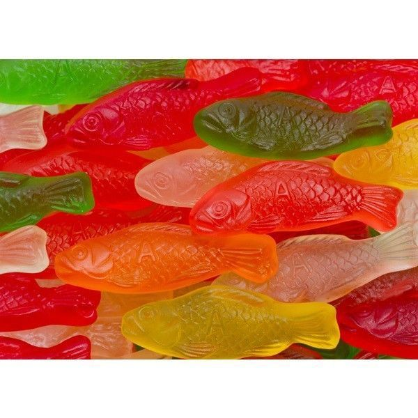 Albanese sugar free gummi fish premium candy 1lbs made for Gummy fish candy